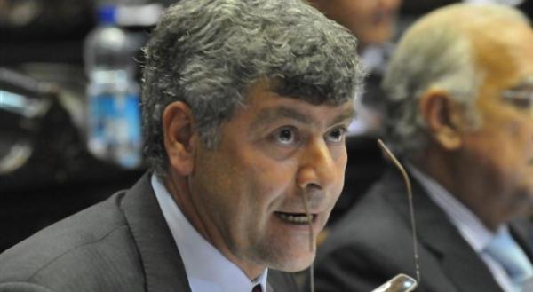 Ricardo Buryaile, Diputado Nacional